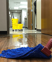 Vinyl Tile Strippers, Cleaners & Maintainers
